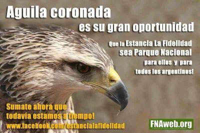 Águila Coronada por La Fidelidad