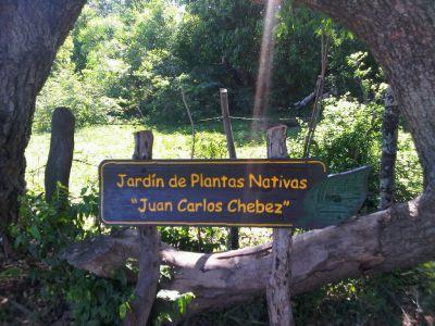 jardin de plantas nativas Juan Carlos Chebez