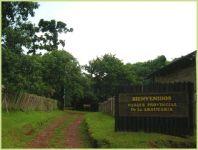 Parque Provincial de la Araucaria