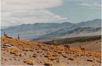 parque nacional san guillermo