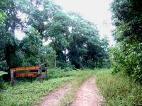 reserva guarani