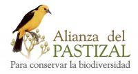 Logo_Alianza