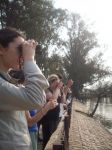 observacion aves