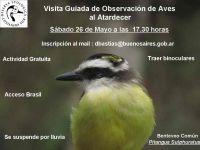 Salida de observación de aves al atardecer en Costanera Sur