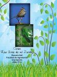las_aves_de_mi_jardín