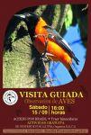 Aficheta observacion de aves