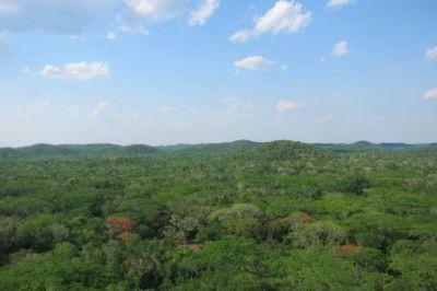Mexico_Reserva-de-Kihuic_Yucatan_Irene-Zager