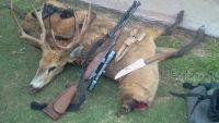caza ciervo de los pantanos