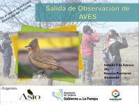 La Pampa: salida de observación de aves en Guatraché