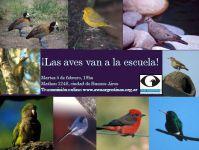 las aves van a la escuela