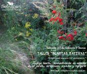 Taller de Plantas Nativas