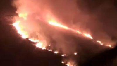 reserva costanera sur incendio