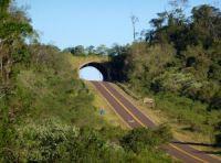 Organizaciones transmiten al Gobernador de Misiones su preocupación por la construcción de nuevas rutas
