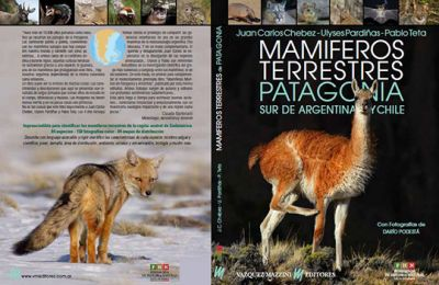 mamiferos terrestres de patagonia y sur de Chile