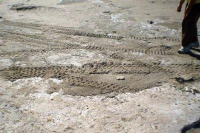 Dañan yacimiento arqueológico en Pehuen-Co