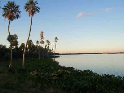 Laguna del Palmar Chaco