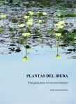 Plantas del Iberá