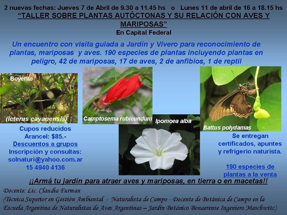 Taller sobre plantas aut ctonas y su relaci n con aves y for Vivero plantas nativas