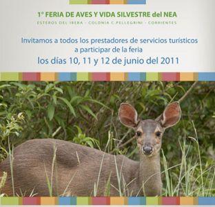 1° Feria de Aves y Vida Silvestre del NEA