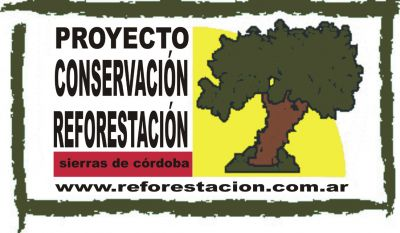 reforestación bosque nativo